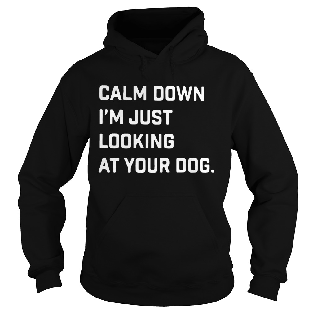 Calm down Im just looking at your dog Hoodie
