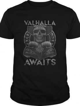 Skull Valhalla Awaits Viking shirt
