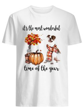 American Pit Bull Terrier it's the most wonderful time of the year shirt