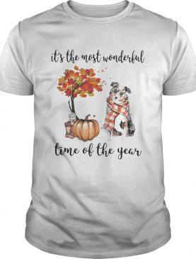 Australian Shepherd its the most wonderful time of the year shirt
