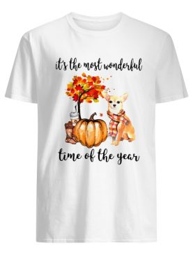 Chihuahua it's the most wonderful time of the year shirt