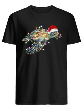 Turtle with Chirstmas hat and light shirt