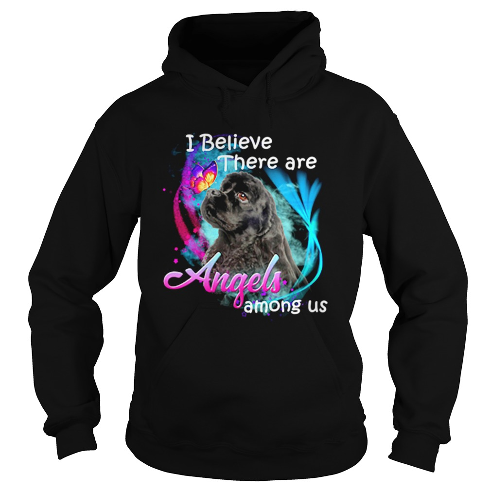 American Cocker Spaniel I believe there are angels among us Hoodie