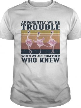 Flamingo apparently were trouble when we are together who knew vintage shirt