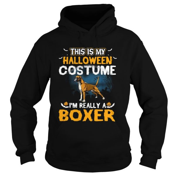 This Is My Halloween Costume Im Really A Boxer  Hoodie