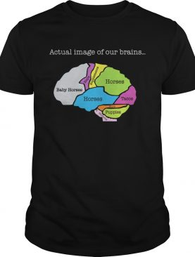 Actual image of our brain map horses shirt
