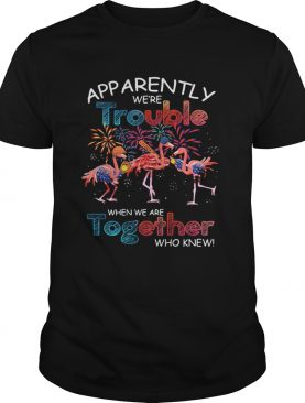 Apparently were trouble when we are together who knew Flamingo shirt