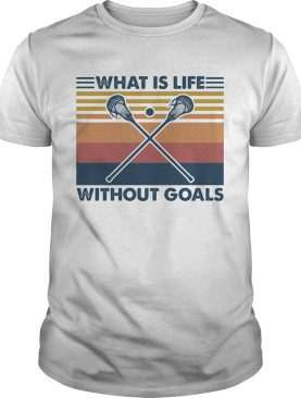 Disc golf what is life without goals vintage retro shirt