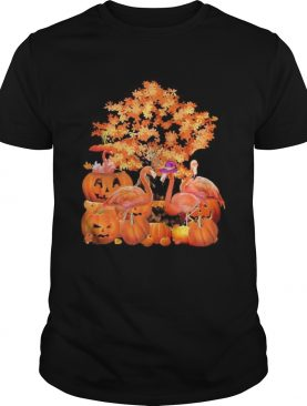 Fall Flamingo Halloween shirt