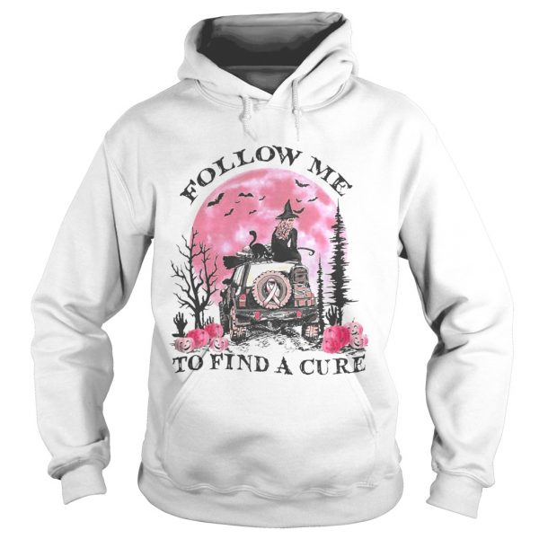 Halloween witch follow me to find a cure cancer awareness  Hoodie