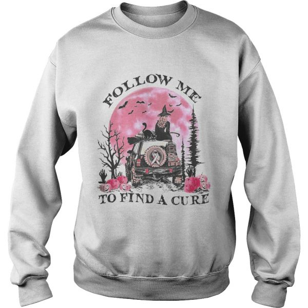 Halloween witch follow me to find a cure cancer awareness  Sweatshirt