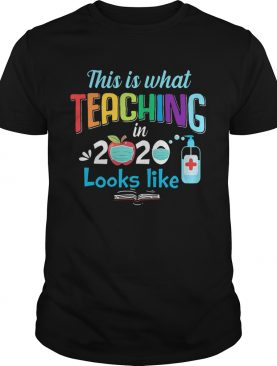 This Is What Teaching In 2020 Looks Like shirt