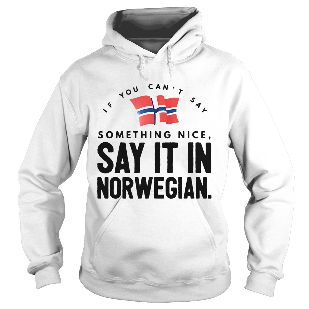 If You Cant Say Something Nice Say It In Norwegian Hoodie