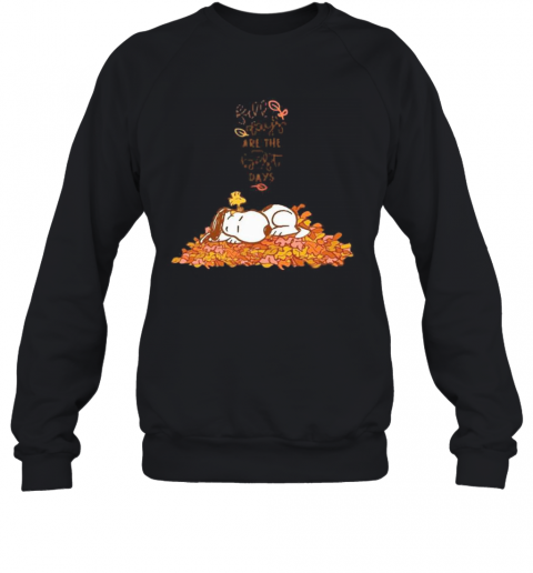 Snoopy Fall Plays Are The First Day T-Shirt Unisex Sweatshirt