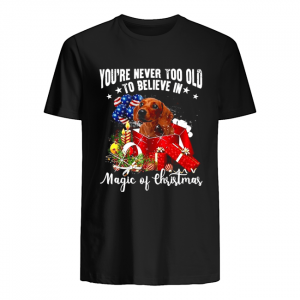 You're Never Too Old To Believe In Magic Of Christmas shirt