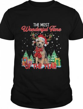 Border Terrier Santa the most wonderful time of the year Christmas shirt
