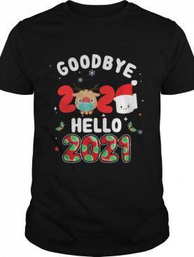 Goodbye 2020 Toilet Paper Santa Hello 2021 shirt