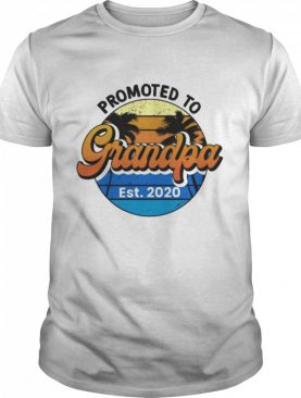 Promoted to grandpa 2020 shirt